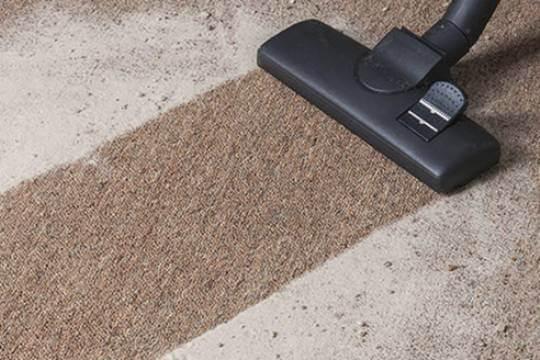 Удаление пыли и шерсти