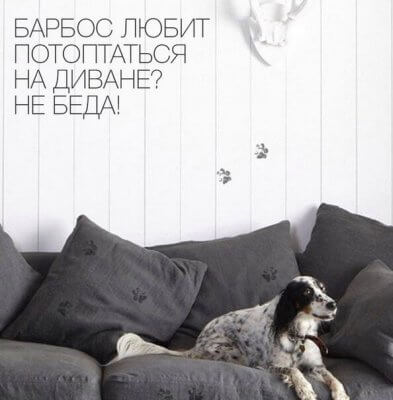 3 способа как почистить ковер или диван от шерсти собаки